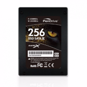 PenDrive 256GB Internal SSD