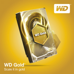 WD 2TB Gold Datacenter Hard Drive